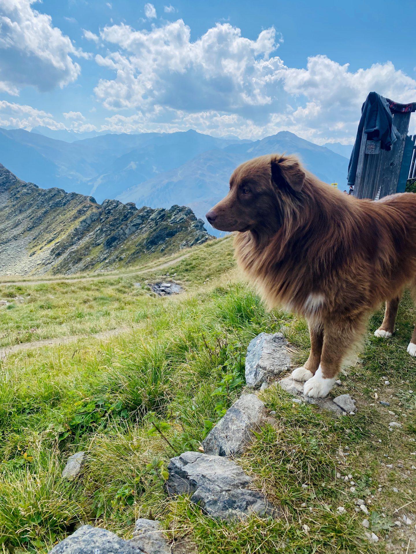 Tirol oostenrijk credit Caroline Vlietstra